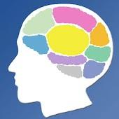 뇌구조 테스트