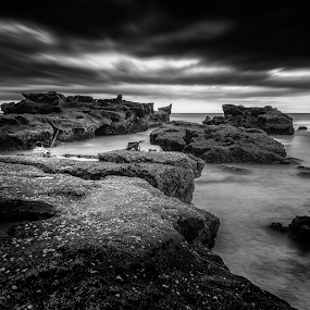 Dark Fisher by Rio Tanusudiro - Black & White Landscapes ( contrast, coral, angler, bw, mood, long exposure, rock, fisher, beach, bnw, light,  )