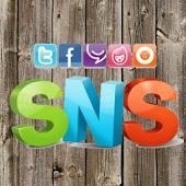 SNS Board