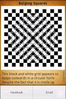 Screenshot of Optical Illusions