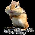 Funny Hamster Widget logo