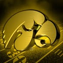 Iowa Hawkeyes Revolving WP icon