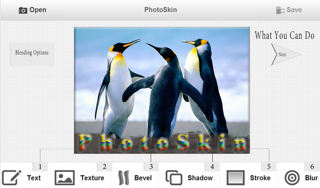 PhotoSkin Photo Editor - screenshot