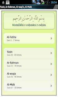 Yasin Audio (Ali Al-Hudhaify)- screenshot thumbnail