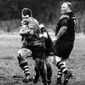 Coming through  by Phil Barker - Black & White Sports ( mono    rugby.   three players.  mud. ball. tackle. game. )