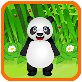 Pet Care Panda Animal