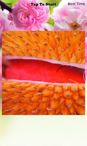 Durian Puzzle