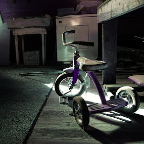Lost Memories by Dustin White - Artistic Objects Still Life ( bike, tricycle, still life, forgotten, storage,  )
