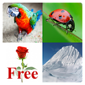 Learn English Words Free icon