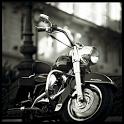 Great Harley Davidson icon