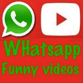 Whatsapp funny share videos