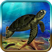 Turtle Adventure Game