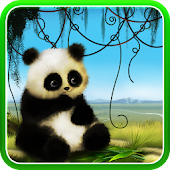 Animated Panda Live Wallpaper