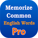 Memorize Common Eng Words Pro icon