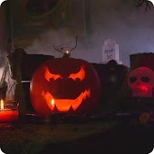 Halloween Pumpkin Live HD