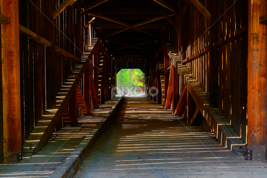 Bridge to Yesterday by Ken Wade - Buildings & Architecture Architectural Detail ( history, national park, covered bridge, yosemite, pioneer village, journey, bridge,  )