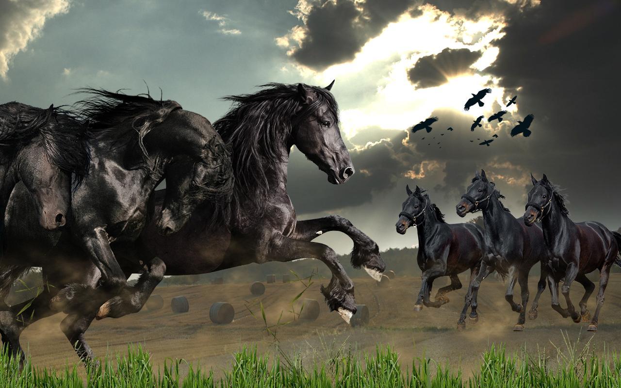 Beautiful Wild Horses Wallpaper Wild Horses Live Wallpaper