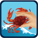 Crab Fishing icon