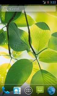 Green Leaves HD- screenshot thumbnail