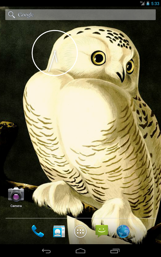 Audubon's OWLS HD+ Wallpaper- screenshot