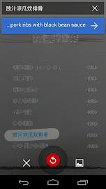 Google Translate Screenshot 3