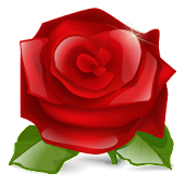 Rose 3D live wallpaper