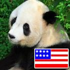 動物用英语 icon