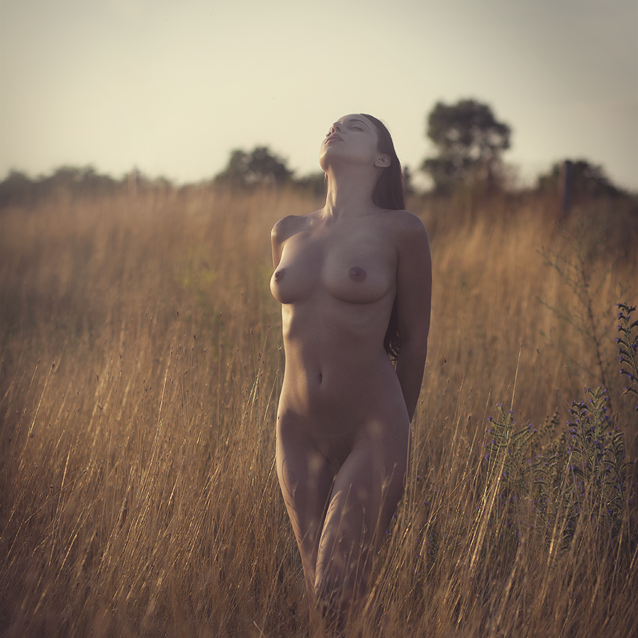 Mery by Dinko Dinev - Nudes & Boudoir Artistic Nude ( sunset, woman, act, passion, portrait )