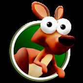 KangooRun