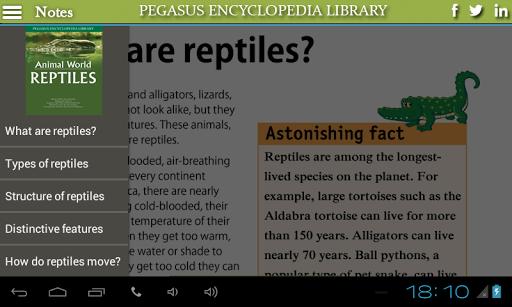 Animal World-Reptiles