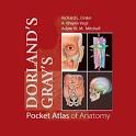 Atlas of Anatomy icon