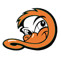 Long Island Ducks icon