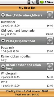 Voice Grocery Shopping List - screenshot thumbnail