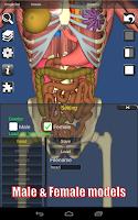 Screenshot of 3D Bones and Organs (Anatomy)