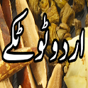 Urdu Totkay and beauty tips icon