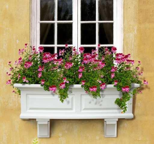 Window Box Design