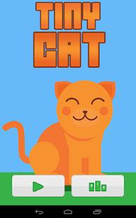 Tiny Cat