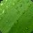 Ultra Notes theme – Spring M 0 logo