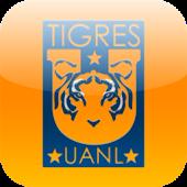 Tigre Trivia