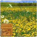 spring flower yellow dandelion icon