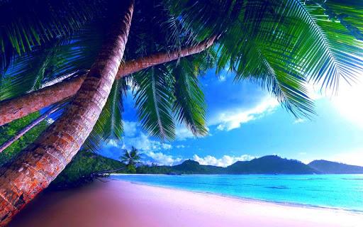 【免費個人化App】Sandy Beach Wallpaper HD-APP點子
