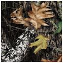 Mossy Oak Brown Theme