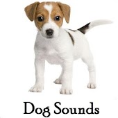 Dog Sounds