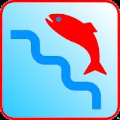 Spearfishing utility
