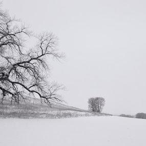 by Johnny Gomez - Black & White Landscapes