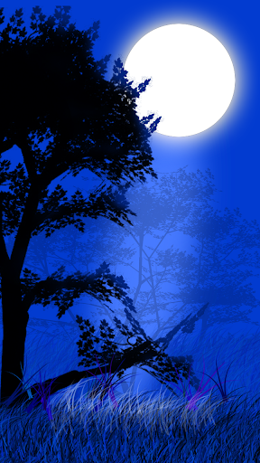 Moon Light Wallpaper