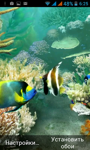 Tropical Aquarium 3D WALLPAPER