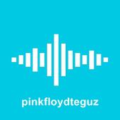pinkfloydteguz