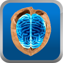 Easy Brain Fitness icon