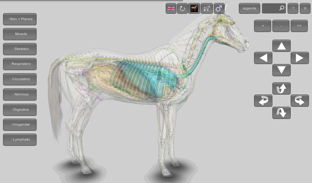 Download 3D Pferd Anatomie Software Apk Neueste Version App Für ...